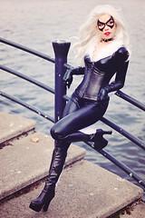 Black Cat (Spiderman)