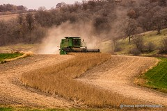 Soybeans and S Curves (Thomas DeHoff) Tags: wisconsin john sony combine deere soybeans a580