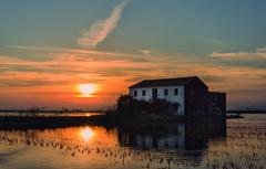 Atardecer en los arrozales (juanjofotos) Tags: sol atardecer agua cielo nubes reflejos albufera arrozales alquera perell nikond800 juanjofotos juanjosales