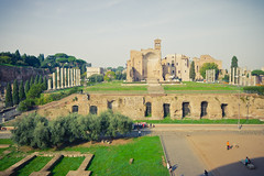 Roma (GaryTumilty) Tags: trees italy rome green nature yellow architecture buildings gold ruins warm colosseum pillars