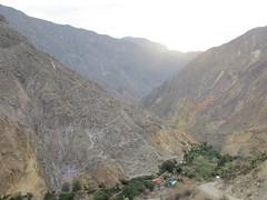 Colca Canyon-53