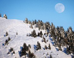 Bettmeralp (ISO 69) Tags: schnee moon mountain snow mountains berg schweiz switzerland mond skiing suisse fullmoon berge skiresort svizzera wald wallis valais aletsch vollmond bettmeralp