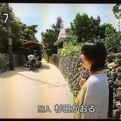 日曜日の朝から遠くへ行きたい、杉田かおる。マニアには堪らんのw