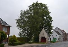 Sint-Andrieskapel, Strijpen (Erf-goed.be) Tags: geotagged kapel oostvlaanderen zottegem archeonet strijpen geo:lat=508672 geo:lon=37996 sintandrieskapel