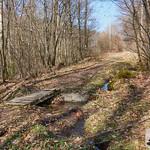 Holzbrücke über den Pfad thumbnail