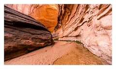 A bend (Brendan Swihart) Tags: wilderness backpacking navajonation navajotribalpark a7rii voigtlander ultrawideheliar12mmf56iii canyoneering glencanyon
