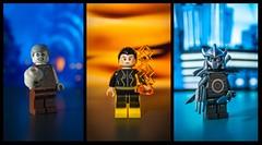 [DC] Immortal Trouble (| Jonathan |) Tags: lego dc comics solomon grundy black adam talon court owls kahndaq gotham villains superheroes custom minifigures purist figbarf tethadam