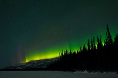 Laser-cutting the Hilltop (MIKOFOX ⌘ Show Your EXIF!) Tags: sky winter yukon spruce learnfromexif canada lake snow provia trees xt2 mikofox march stars auroraborealis northernlights fujifilmxt2 showyourexif landscape bigfoxlake hills xf1024mmf4rois
