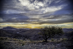 Wind_Rock_Sky-1200 (Roger K. Allen) Tags: fortdavis texas unitedstates davis mountains state park sunset sky coulds golden trees camping campground skyline drive wind cold breath taking landscapes