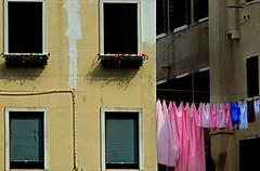 oggi i colorati .... (Rino Alessandrini) Tags: bucato urbano scorci città stesi asciugare stoffa finestre facciata appesi laundry urban glimpses while lying city dry cloth hanging facade windows