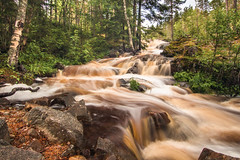 Forest Cascade (Neal Williams) Tags: forest cascade waterfall norrbotten sweden bröstfallet landscape norrland longexposure