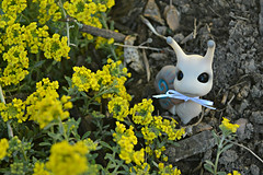 Spring! (air_dan) Tags: mushroom peddler bjd pet snail