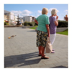 Appetite (ngbrx) Tags: westonsupermare somerset england uk united kingdom people menschen promenade seagull möwe great grossbritannien britain
