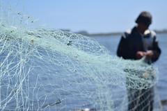 Pescador (ignaciovidelahidalgo) Tags: fisher beach sea ocean person nikon nikond3300 net chile