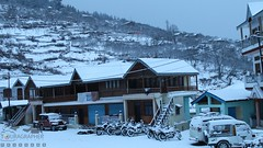 Snow Storm 2017, Uttrakhand, India (touragrapher) Tags: dharali harshil heroimpulse himalayas himalyan incredibleindiaadventuremotorcyclinguttrakhandtourism mountains offroader royalenfield suvs snow snowstorm2017 snowstorm thar thunderbird uttarkhashi uttrakhand uttrakhandtourism whereeaglesdare yamahawr450f mahindra remotestcorners thehills thesuvs tourer