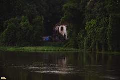 Old house by the river II (Otacílio Rodrigues) Tags: rio casa house árvores trees margem riverbank água water reflexos reflections varal clothesline resende brasil oro topf25