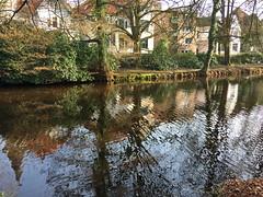 OLdenburg, Schlosspark (antje whv) Tags: oldenburg schlosspark castlegrounds graben ditch spiegelungen reflection bäume trees frühling springtime
