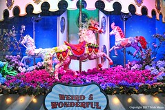 Weird & Wonderful (Trish Mayo) Tags: macys macysflowershow horses carousel macysheraldsquare carouselhorses flowers