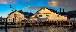 Gulf of Georgia Cannery c. 1894