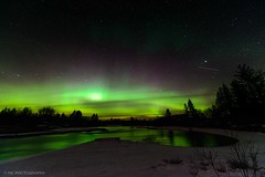 Northern Night... (mc_icedog) Tags: aurora borealis landscape water nightfall trees tripod glow green outdoors snow wide angle astrophotography long exposure cold colors reflection depth field stars meteor