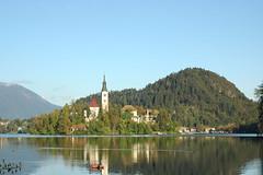 Island in the lake - Slovenia (stevelamb007) Tags: slovenia bled lakebled island landscape julian alps stevelamb nikon church steeple d70s nikkor 50mmf18