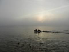 Matin brumeux (Daniel Biays) Tags: sunrise leverdesoleil brouillard fog bateau boat lagironde pauillac
