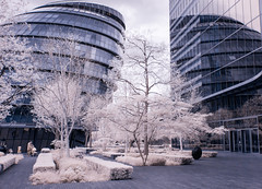 Infrared London April 16th 2017 (40 of 66) (johnlinford) Tags: canon40d canonefs1022 infrared infraredlandscape infraredlondon london cityhall