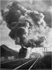 Attractive Effort (channel packet) Tags: china steam train railway railroad sy smoke fog pollution mono blackandwhite jixi industry industrial davidhill