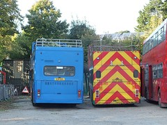 Vectis - Treeloppers - 934BDL & A174VFM (Waterford_Man) Tags: vectis olympian islandbreezer iow treeloppers 934bdl a174vfm