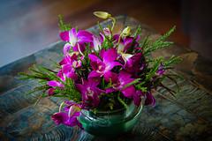 FoT35 (Мaistora) Tags: flowers bouquet decoration interior indoor thailand red magenta purple pink green table floor