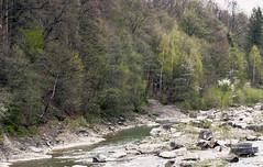 Горная речка (igor_shumega) Tags: природа пейзаж горы река лес дерево весна вода водопад воздух