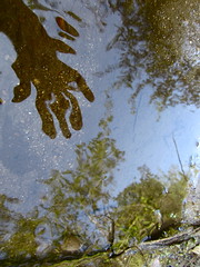 Shake hand (andressolo) Tags: camera distortion reflection water reflections river pond hands waves hand distorted manos reflected reflect reflejo mano shake ripples reflejos distortions