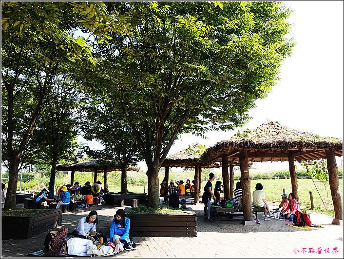 首爾 天空公園 (14).JPG
