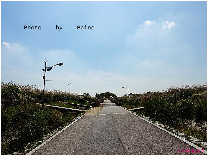 首爾 天空公園 (18).JPG