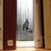 The secret lives of books