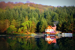 Just another autumn lakeside reflection (Cristian tefnescu) Tags: autumn wild lake fall nature water forest landscape mirror wasser romania teich wald reflexion spiegelung waterscape deich banat oglinda rumaenien reflexie padure almaj