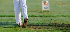 Vale Piso Golf Resort (AFPereira) Tags: green portugal nature canon golf natureza resort porto lee 6d relva santotirso golfe relvado golfista piso afpereira agnp valepiso