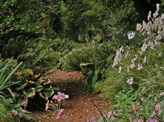 The Garden of Scents (Dazzygidds) Tags: exploring peaceful serenity nationaltrust warwickshire tranquillity coiughtoncourtgardens gardensofbeauty