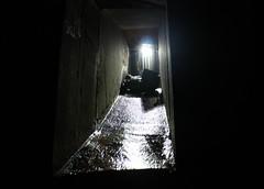 IMG_3876 (Aydun) Tags: underground sydney drain urbanexploration stormwater urbex
