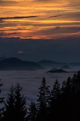 Sunset in the Alps (Foto Schlachthof) Tags: trees sunset cloud sun mountains alps tree nature berg clouds sonnenuntergang background postcard natur wolke wolken atmosphere berge alpen sonne atmosphre foreground hintergrund postkartenmotiv vordergrund wendelstein breitenstein fischbachau voralpen