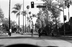 You're living in a dreamland (Immane) Tags: blackandwhite bw streets film monochrome analog 35mm landscape losangeles 11 d76 filter k2 135 crosswalk skateboarders supertakumar fomapan rosewoodave pentaxspotmaticii aristaeduultra100 55mmf18 roll133
