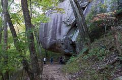 Large Rocks on Waterfall Trail (4 Pete Seek) Tags: statepark georgia alpha a77 cloudlandcanyon 1650 georgiastatepark cloudlandcanyonstatepark sonya77 sal1650f28 alphaa77 sony1650