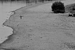 Einsam (Glaneuse) Tags: people beach river blackwhite alone riverside small gathering riverbank figures