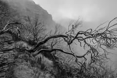 20140926-IMG_9591-2 (sylwesterwilczynski) Tags: holiday mountains canon landscape walk tokina pico ruivo ultrawide 50d
