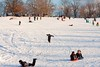 IMG_5945 (Pittsburgh Photography) Tags: snow oakland pittsburgh schenleypark ppc sledriding