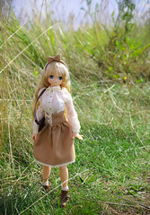 Hit the Road 2 (MagicMirabelle) Tags: road summer green grass japanese doll dolls dress sunny hobby mio azone pureneemo