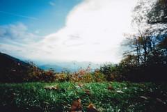 That view though! (busyclickn) Tags: 120 film mediumformat kodak northcarolina pinhole 6x9 blueridgeparkway zeroimage ektar zero69