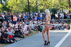 2014-10-24 Miss V8 Supercars GC600 351 (spyjournal) Tags: dreamcoat goldcoast dreamsport dreamcoatphotography dreamsportphotography v8superfest