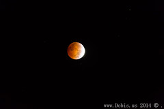Blood Moon-187 (Dobis Images) Tags: red sky moon night canon eclipse blood skies harvest 5dmiii