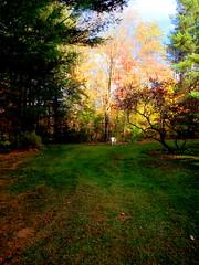 Empty Chair 1 (CoastRanger) Tags: autumn fall vermont vt 2014